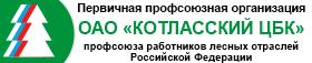 "ОАО ""Котласский ЦБК"""